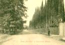 Одонимия Сухума или история названий сухумских улиц