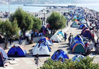 Поток мигрантов растет